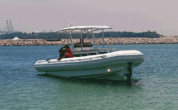 Customized Amphibious RIB Boat