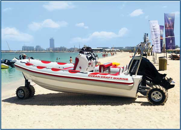 Rigid Hull Inflatable Amphibious Boat